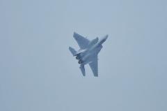 Hyakuri AB_F-15J_333