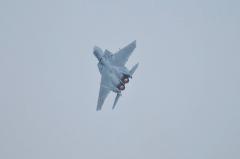 Hyakuri AB_F-15J_334