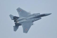 Hyakuri AB_F-15J_336