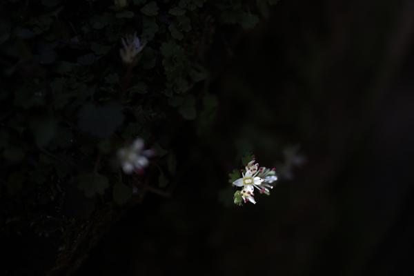 2013_0413_24.jpg