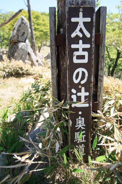 2013_0524_1_24.jpg