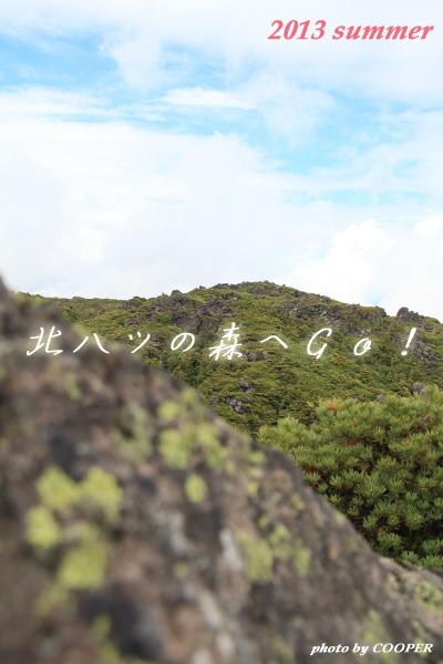 2013_0622_1_42_POP.jpg