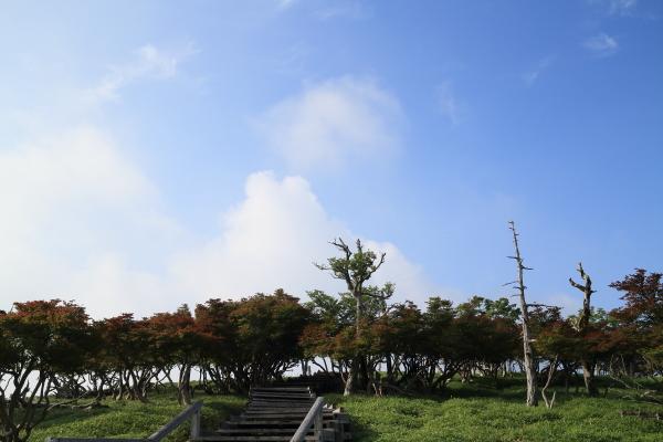 2013_0728_15.jpg