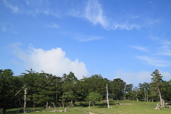 2013_0728_18.jpg