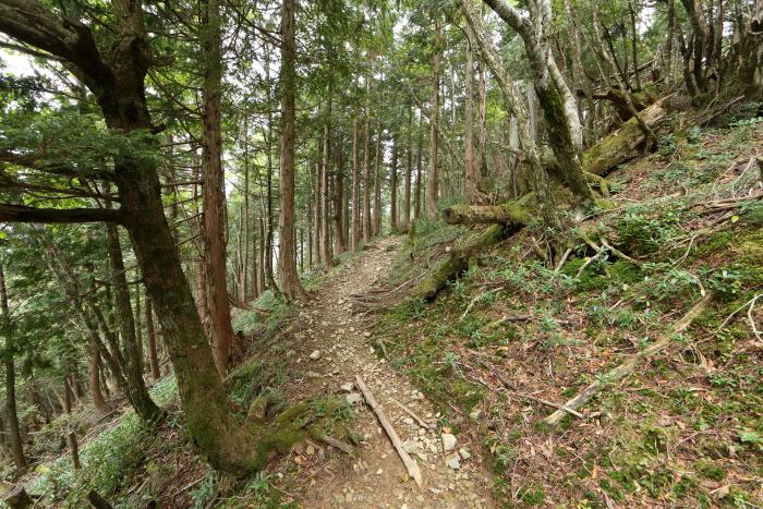2013_0929_11.jpg