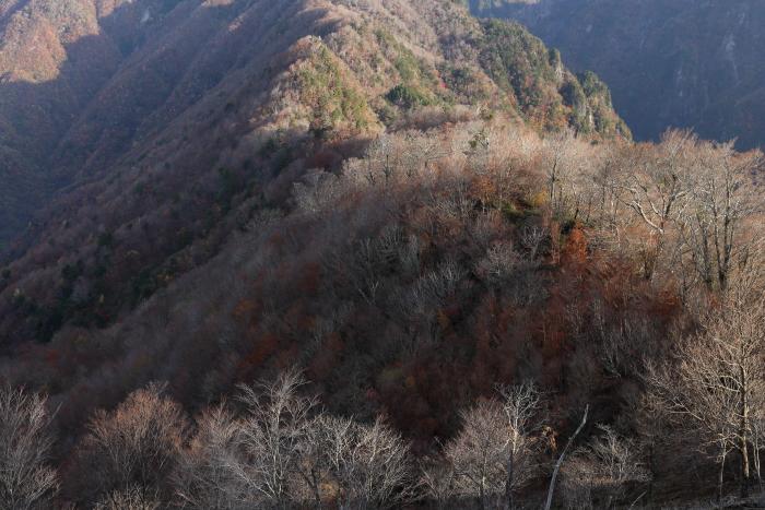 2013_1109_17.jpg
