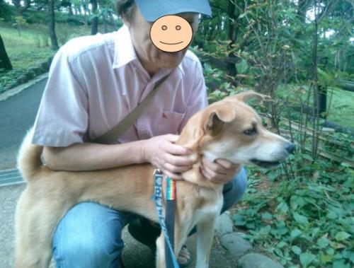 さんぽ1_convert_20130930104846