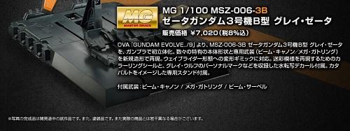 20141121_mg_grayzeta_10.jpg