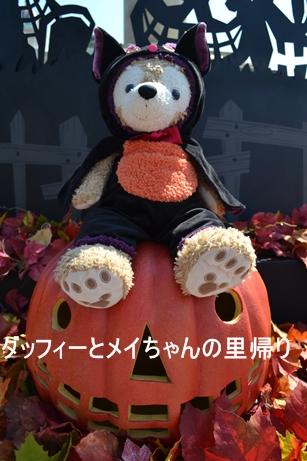 2013-9-13 9-17夜用 (6)