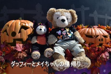 2013-9-13 9-17夜用 (5)