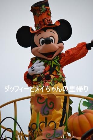 2013-10-23 10-31用 (10)