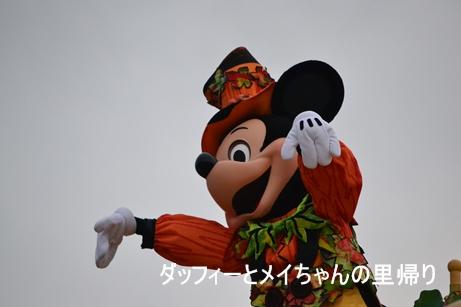 2013-10-23 10-31用 (7)