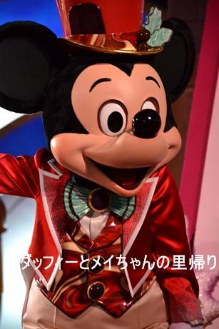 2013-11-5用 12年キュイジーヌ (4)