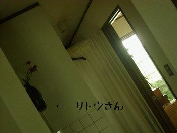 CIMG0115.jpg
