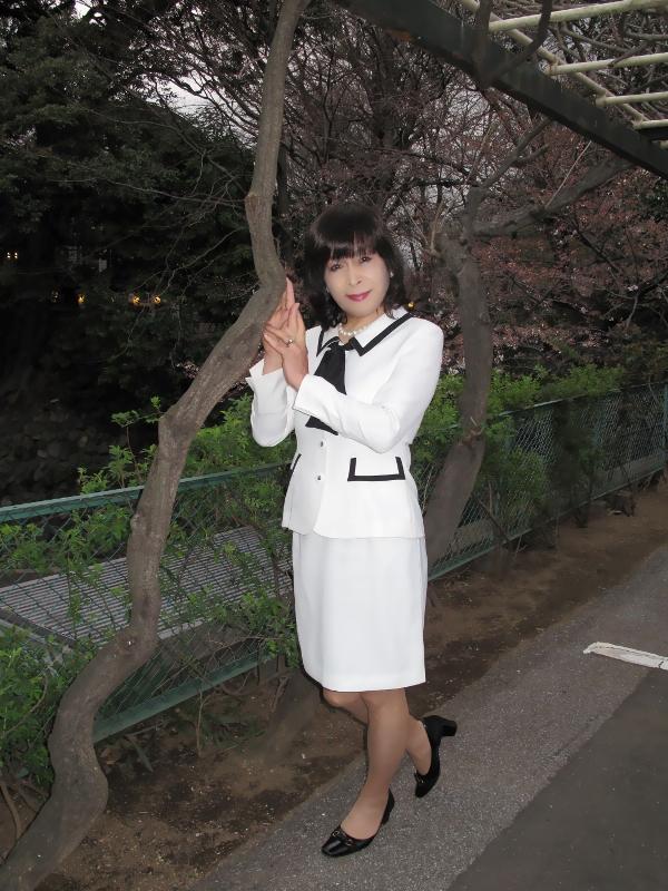 白スーツ花見(2)