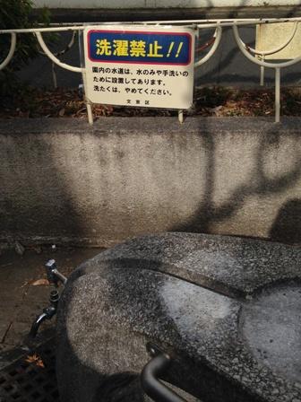 洗濯禁止!