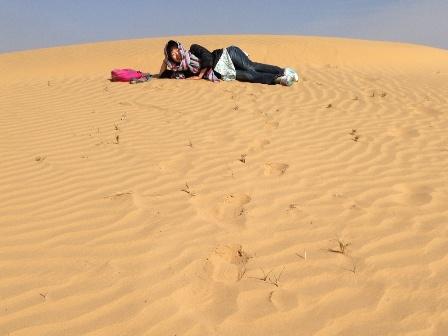 砂丘でゴロン