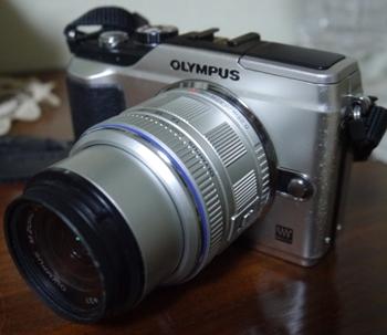 P1010089-1.jpg