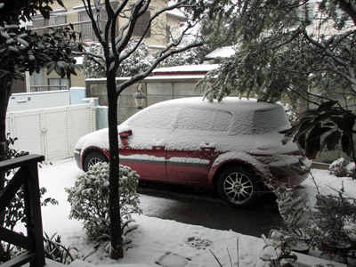 朝の雪模様