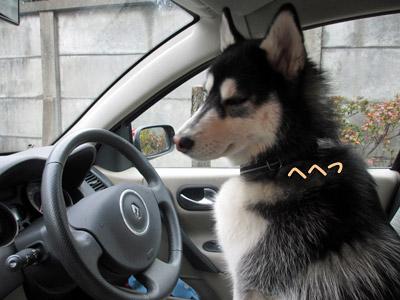運転手すふれ
