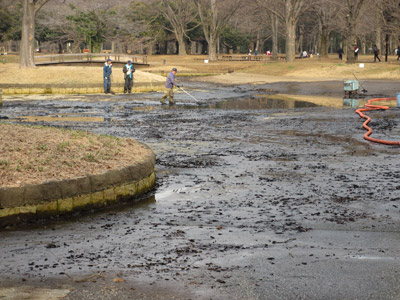 代々木のお池も水抜き中
