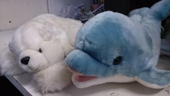 シロクマとイルカのぬいぐるみクリーニング