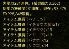 archeage 2014-12-11-7