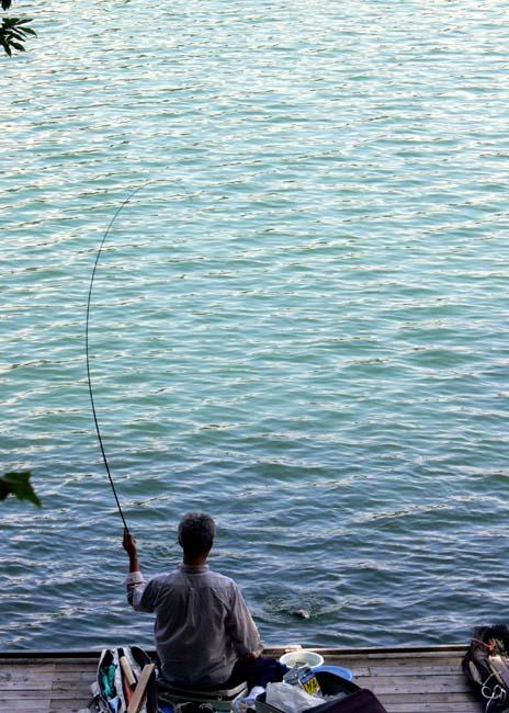 06fishing03.jpg
