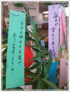 tanzaku6.jpg