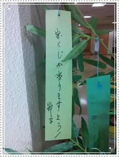 tanzaku8.jpg
