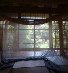 mosquito net8-A