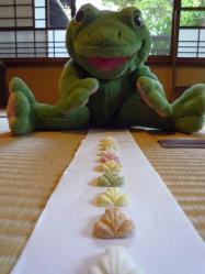 2013cya-frog1.jpg