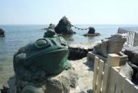 summer-frog4.jpg