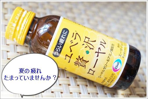 noyama 005-1