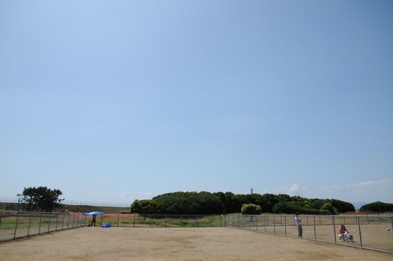 DSC_6751.jpg