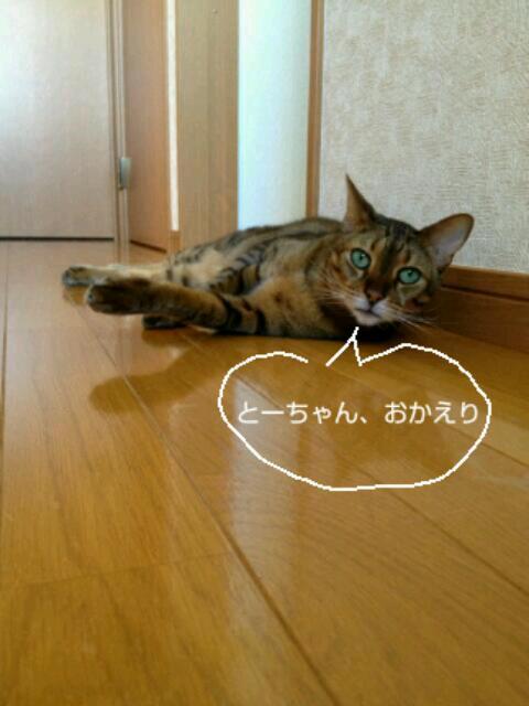 20130626_080240.jpg