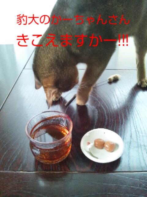 20130708_102956.jpg