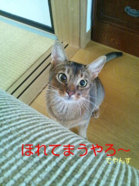 20130728_075441.jpg
