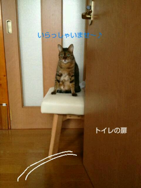20130809_055502.jpg