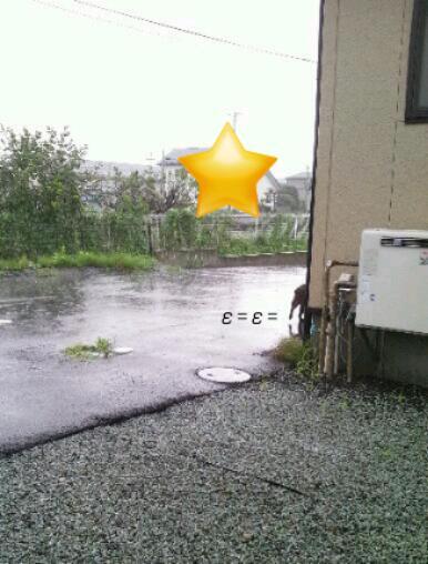 20130829_212311.jpg