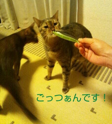 20130919_090537.jpg