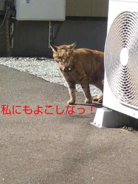 20131019134159ed4.jpg