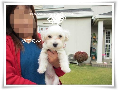 mini2IMG_0002-20141113.jpg