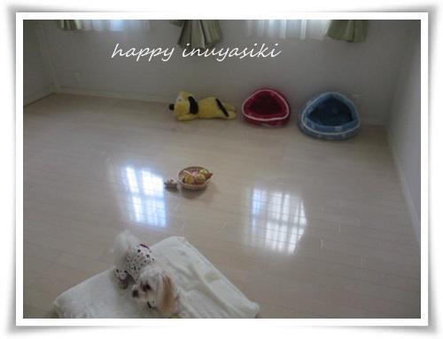 mini2IMG_0016-20141130.jpg