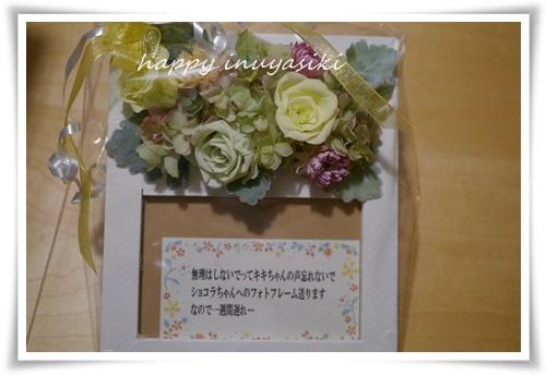 mini2P1390665-20141206.jpg