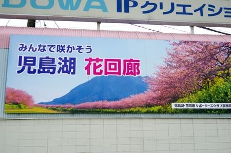 250_10.jpg