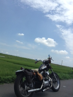 bike19.jpg