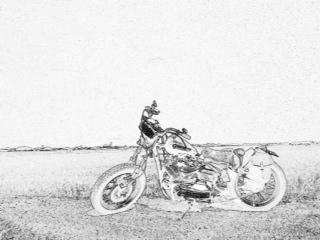bike29.jpg