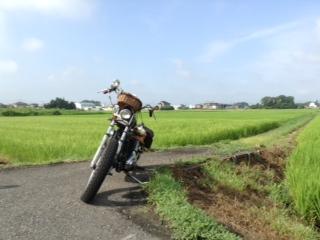 bike3.jpg