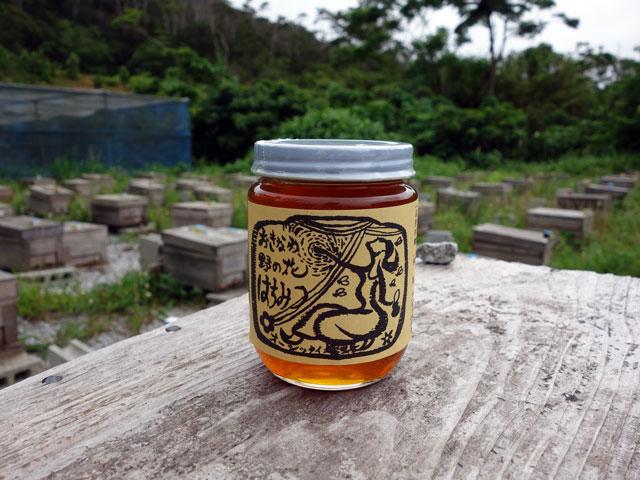 オーシッタイ養蜂1